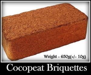 Coco_Peat_Briquettes