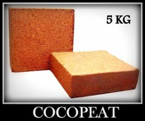 coco_peat_blocks_srcpb_5a